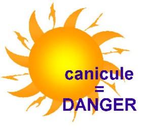 image canicule